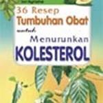 Herba Sebagai Obat Alami Penurun Kadar Kolesterol